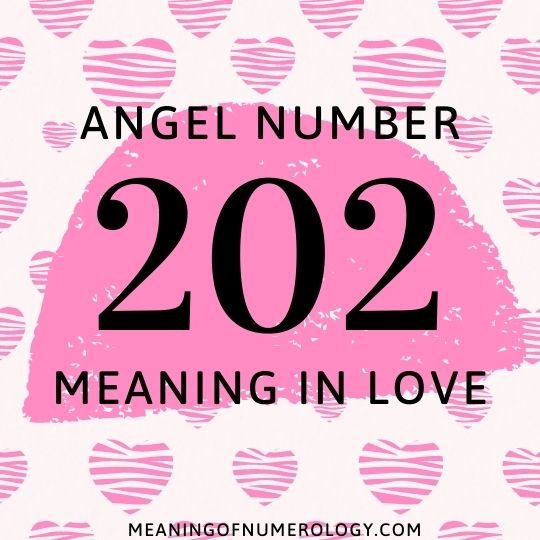 angel number 202 meaning in love