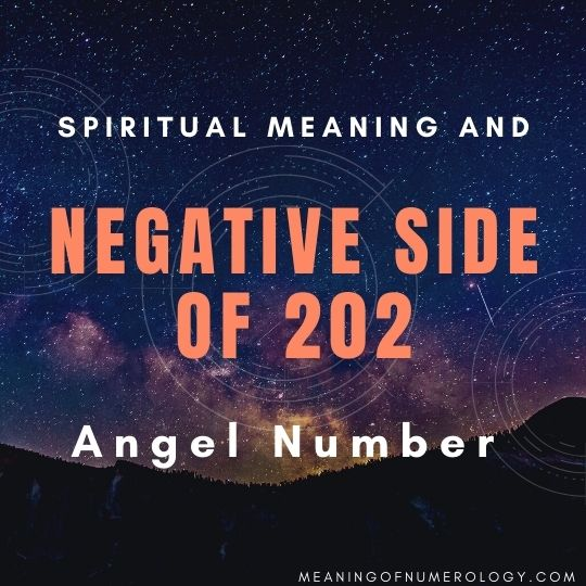 spiritual meaning and negative side of 202 angel number